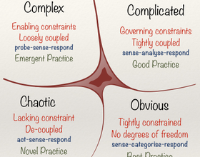 https://en.wikipedia.org/wiki/Cynefin_Framework
