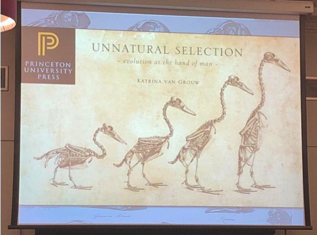 Unnatural Selection - Royal Institution Presentation